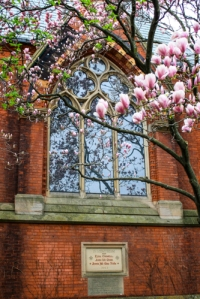 Sage Hall Magnolias